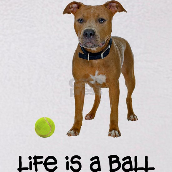 FIN-fawn-pit-bull-life