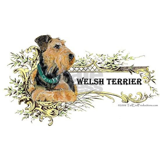 Fabulous Welsh Terrier