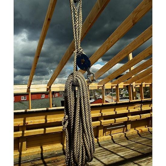 (2) Rope & Pulleys