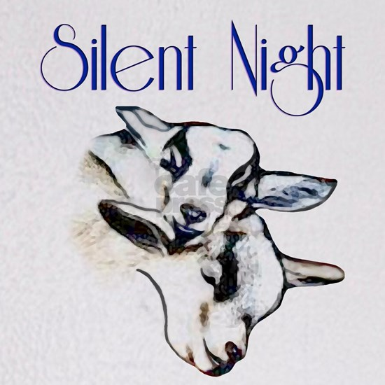 Silent Night Baby Pygmy Goats