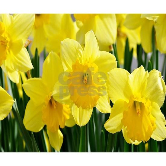 Daffodils Dreams