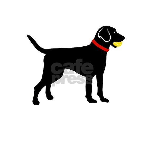 Labrador fetch