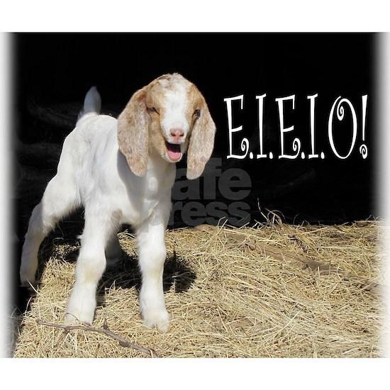 Baby Goat e.i.e.i.o!