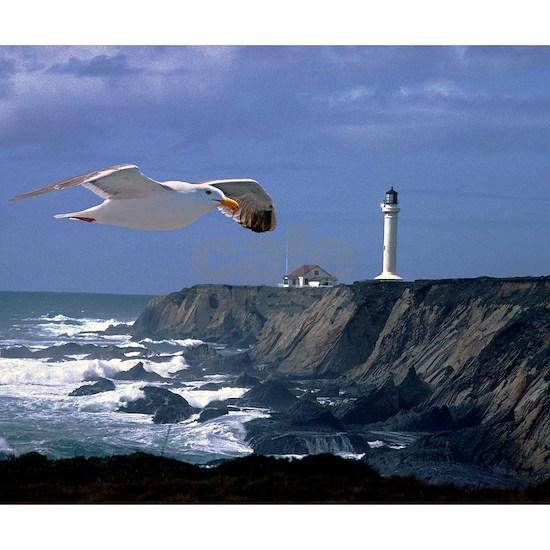 (4) lighthouse  seagull