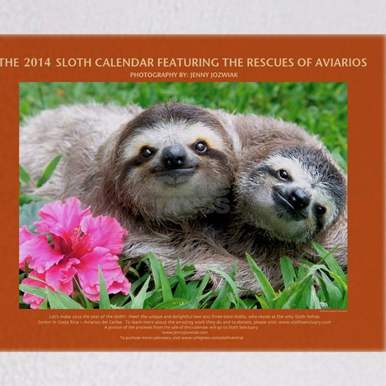 2014 Sloth Calendar Featuring Sunshine and Sammy