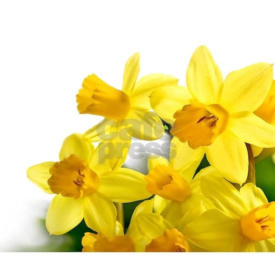 Daffodils Style
