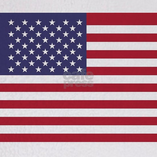USA flag authentic version