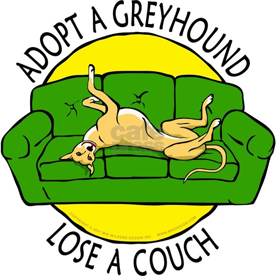lose a couch shirt green and yellow