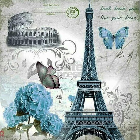 Paris Butterfly