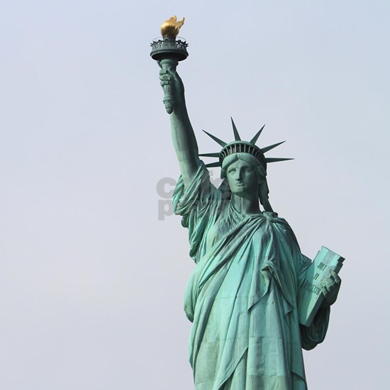 The Statue of Liberty NYC Pro photo