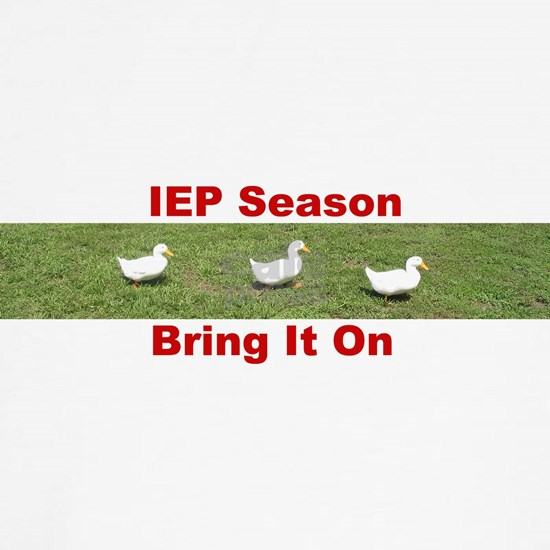 IEP Ducks in a Row