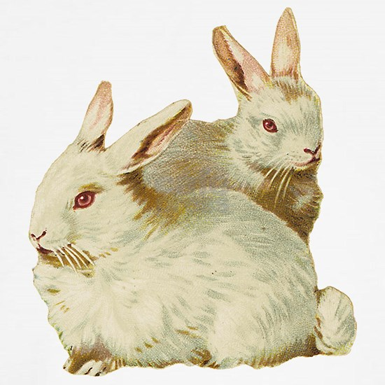White easter rabbits