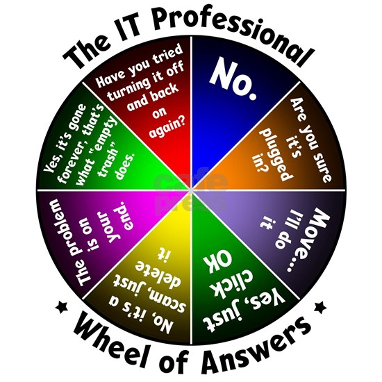 The IT Professional