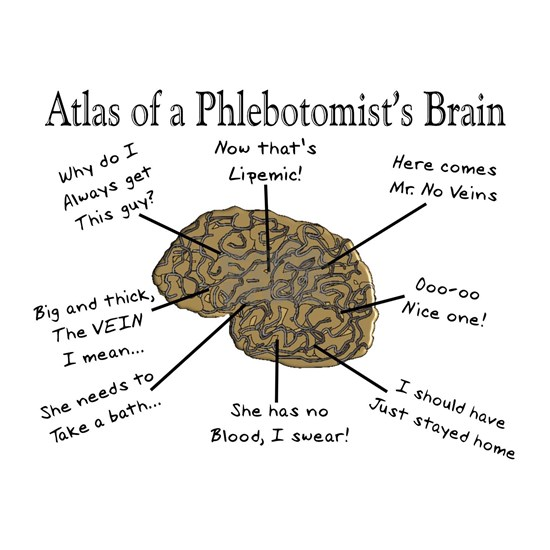 A Phlebotomists Brain
