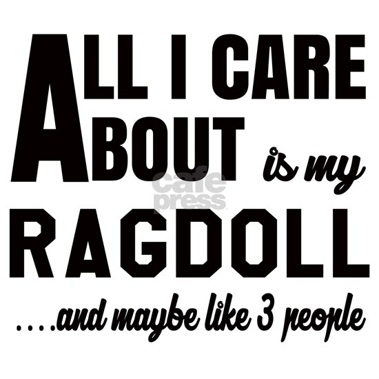All I care about is my Ragdoll