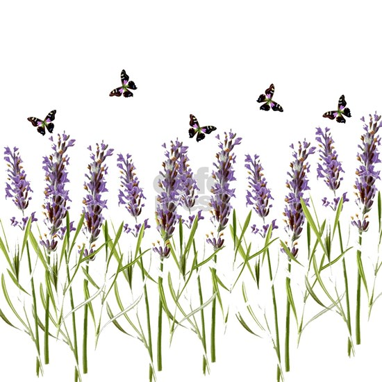 Lavender and butterflies