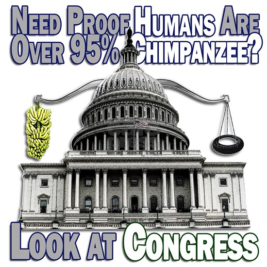 chimp-congress-3