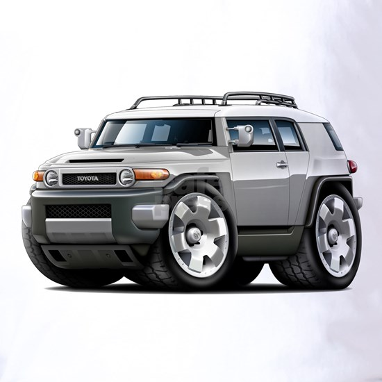 Fj Cruiser Silver Car