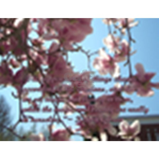 Magic  Beauty ~ Kahlil Gibran Quote