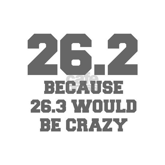 BECAUSE-26.3-WOULD-BE-CRAZY-FRESH-GRAY