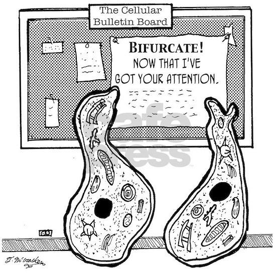 1934_biology_cartoon