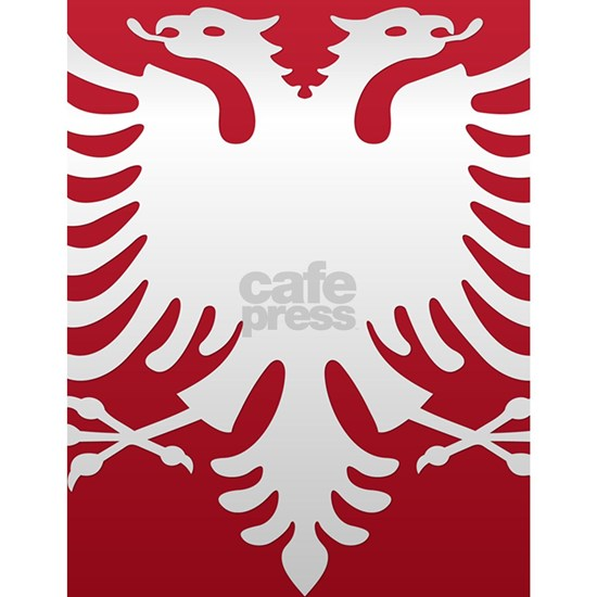 Albanian Eagle White on Red iPhone Case 3GS