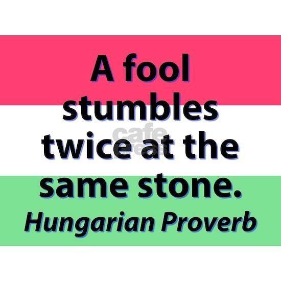 A Fool Stumbles Twice