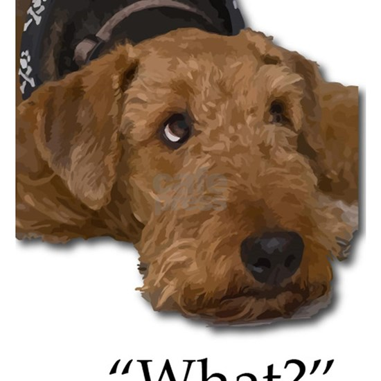 Sad Droopy Eyes Airedale Terrier