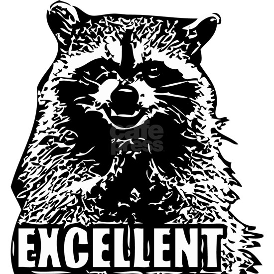 Excellent Raccoon