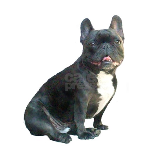 French Bulldog (blk)