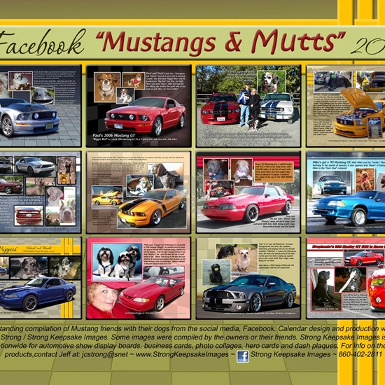 Mustangs and Mutts 2013 Calendar