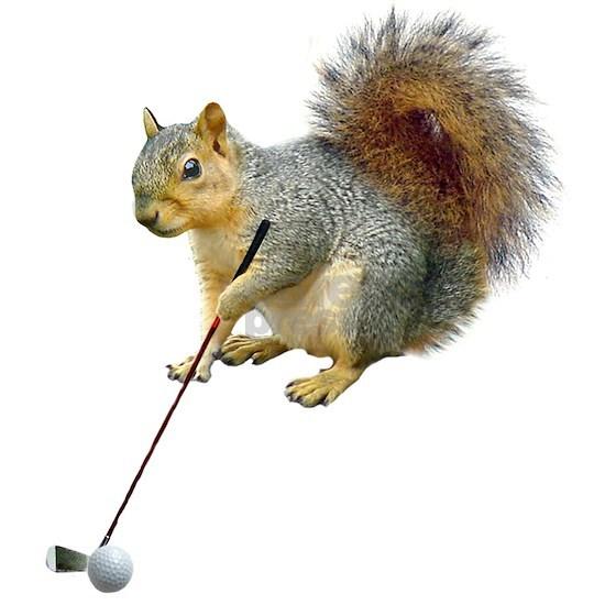 Golfing Squirrel