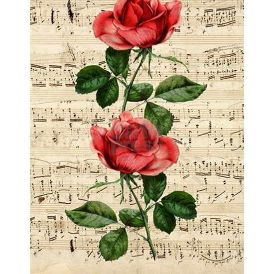 Red Rose Music
