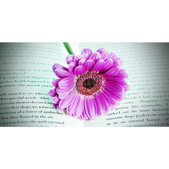 Wonderful Flower with Book