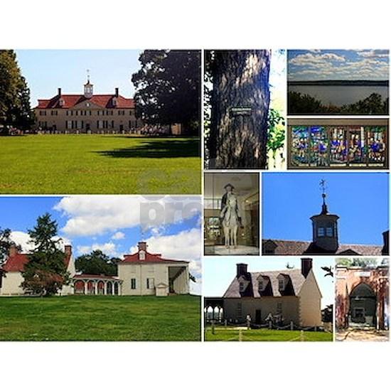 Mount Vernon Collage
