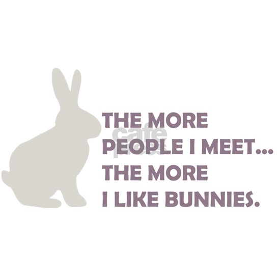 2-THE MORE I LIKE BUNNIES 2 CLEAR BK copy
