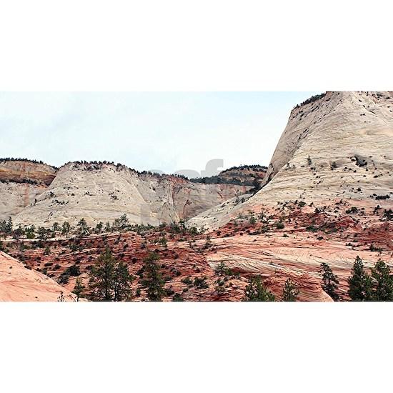 Zion National Park, Utah, USA  19