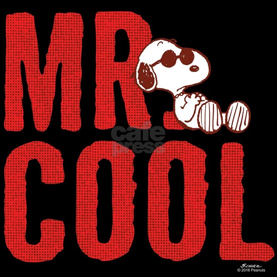 Mr. Cool Dark