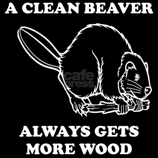 A Clean Beaver Always Gets More Wood