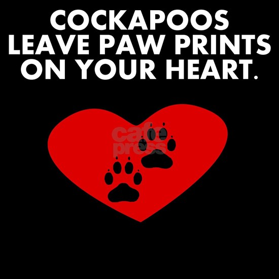 Cockapoos Leave Paw Prints On Your Heart