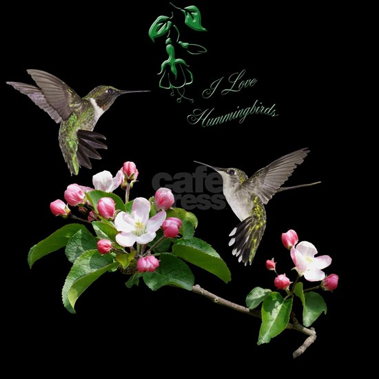 12 X hummingbirds