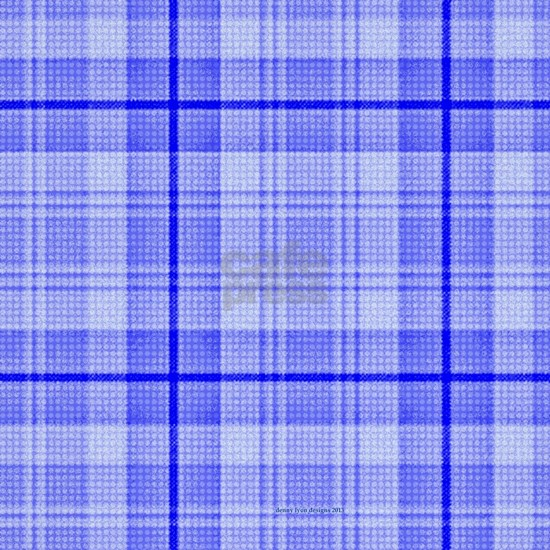 60 inch Curtains Surfer Plaid