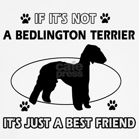 A Bedlington Terrier is more than