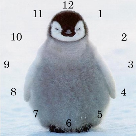 Baby Penguin Clock