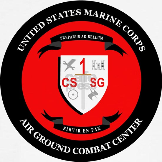 Combat Service Support Group - 1