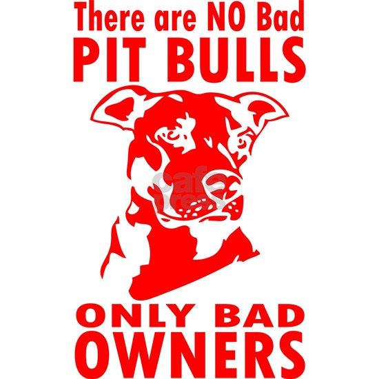 NO BAD PIT BULLS