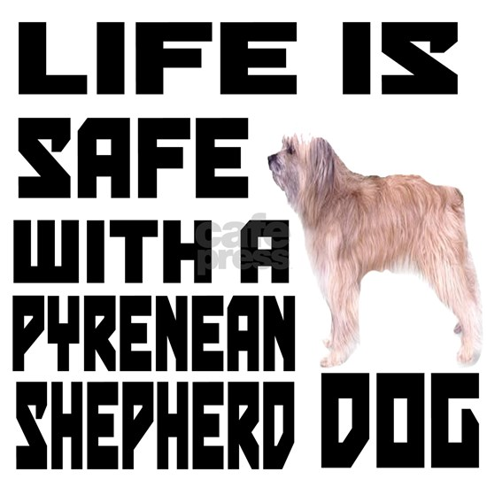 Life Is Safe With A Pyrenean Shepherd Dog