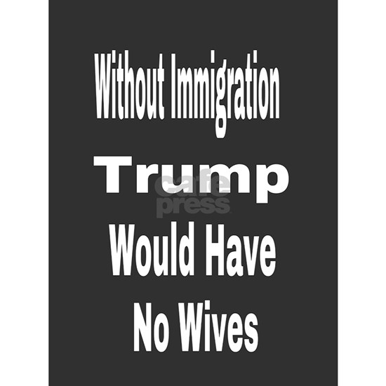 Without Immigration
