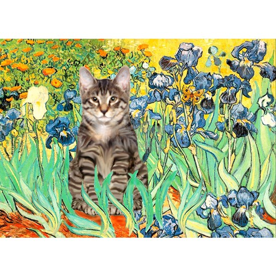 card-IRISES-Cat-tiger