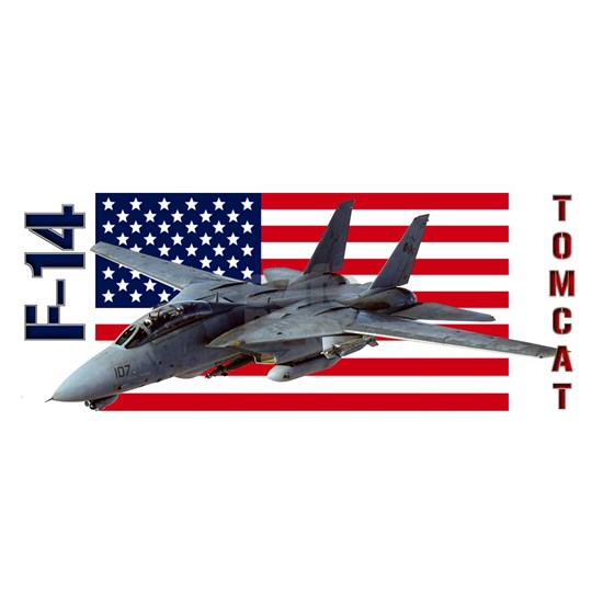F-14 Tomcat on a USA flag